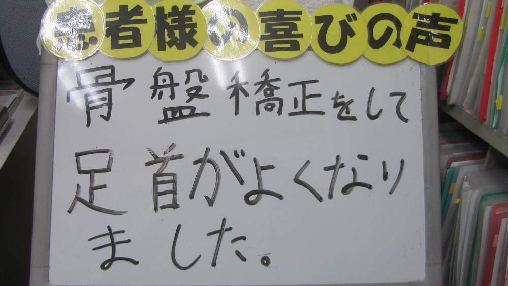 IMG_4154 (2)